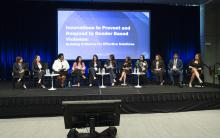 Innovations to Prevent GBV Panel